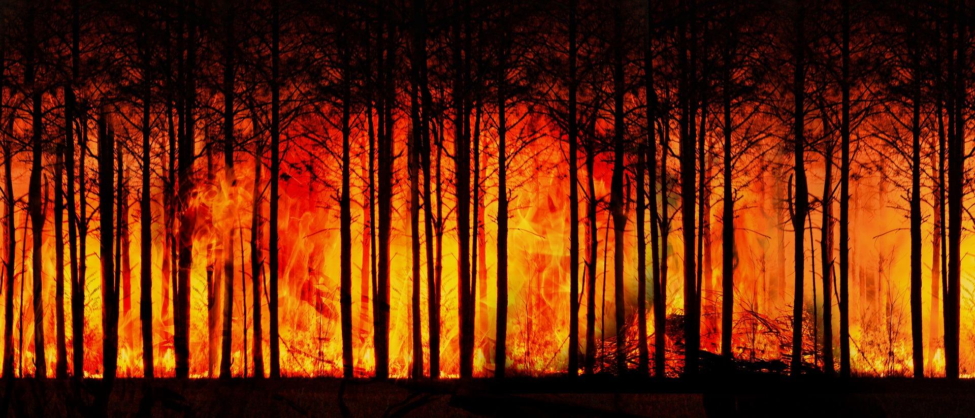 Természeti katasztrófák: a legdrágább évtized volt a mostani
